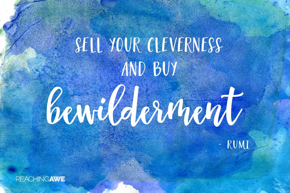 Sell your cleverness and buy bewilderment. -- Rumi